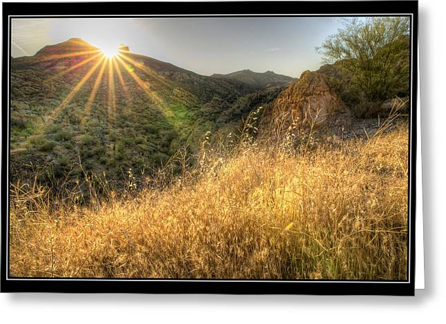 Big Blue Marble Greeting Cards - Field of Gold Greeting Card by Kelly Gibson