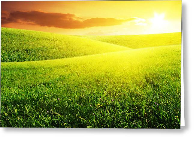 Field of Grass and Sunset Greeting Card by Boon Mee