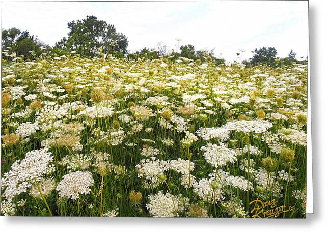 S Landscape Photography Greeting Cards - Field of Lace Greeting Card by Doug Kreuger