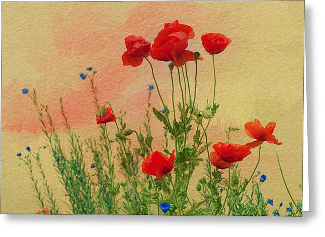 """flora Prints"" Greeting Cards - Field of poppies Greeting Card by Carolyn Dalessandro"
