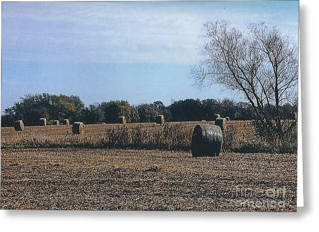 Hay Bales Greeting Cards - Field of Round Hay Bales Greeting Card by Jane Butera Borgardt