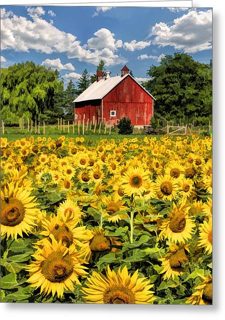 Door County Greeting Cards - Field of Sunflowers Greeting Card by Christopher Arndt