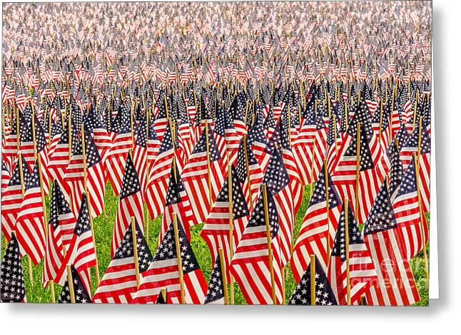 Flag Of Usa Greeting Cards - Field of US Flags Greeting Card by Mike Ste Marie