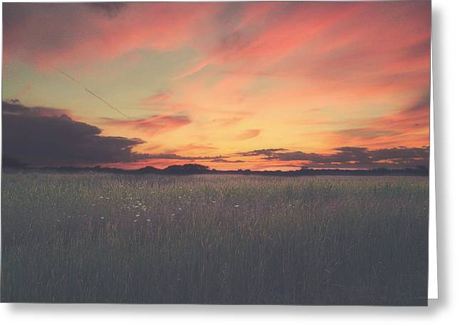Grasses Greeting Cards - Field On Fire Greeting Card by Carrie Ann Grippo-Pike
