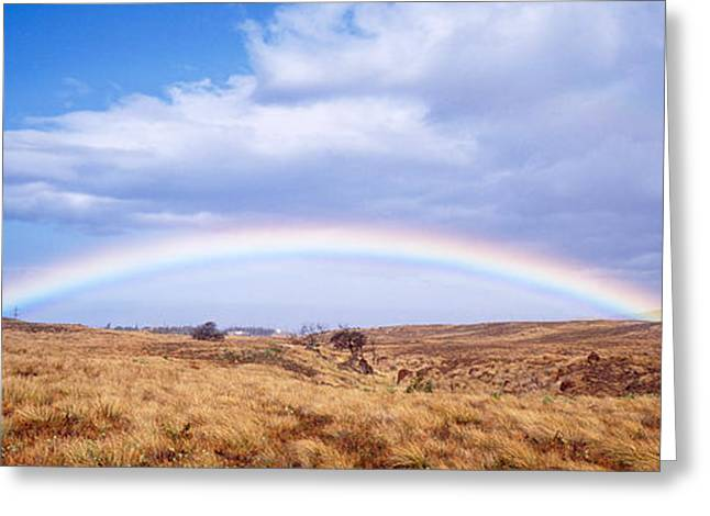 Double Rainbow Greeting Cards - Field, Rainbow, Hawaii, Usa Greeting Card by Panoramic Images