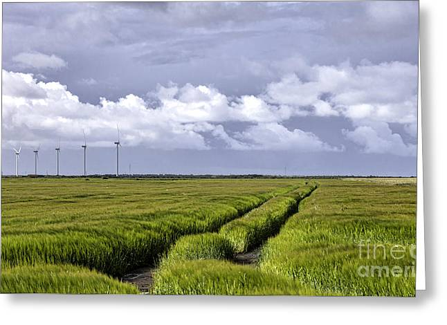 Jutland Greeting Cards - Fields and wind turbines at Stadil fjord Denmark Greeting Card by Frank Bach