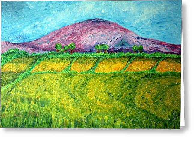 Harvest Drawings Greeting Cards - Fields Around Knocklayde Greeting Card by Paul Morgan