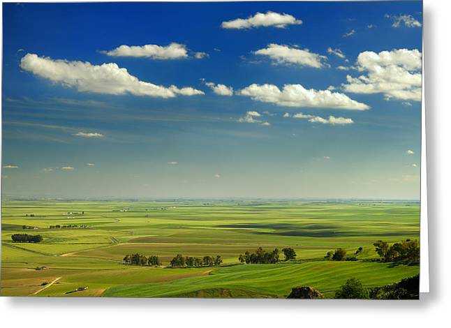 Carmona Greeting Cards - Fields from Carmona castle Greeting Card by Guido Montanes Castillo