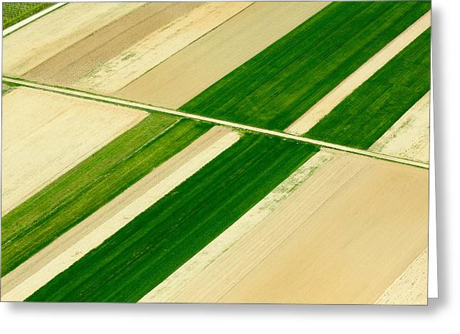 Fields In Spring 5 Greeting Card by Davorin Mance