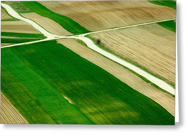 Crossroads Greeting Cards - Fields in Spring Greeting Card by Davorin Mance