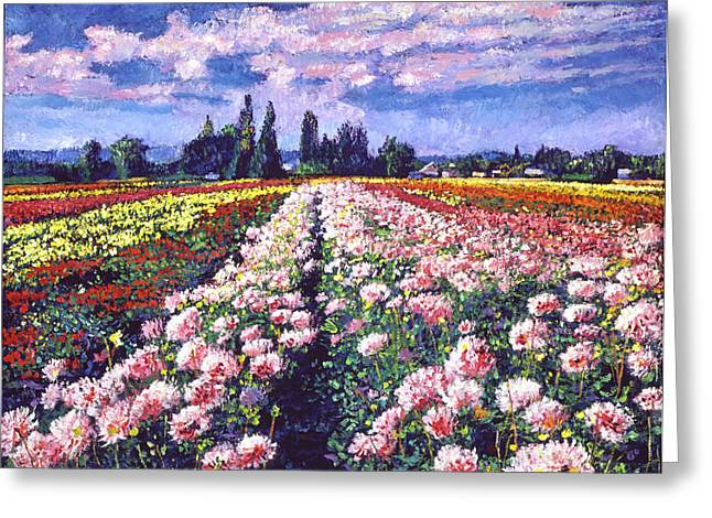 France Greeting Cards - Fields of Dahlias Greeting Card by David Lloyd Glover