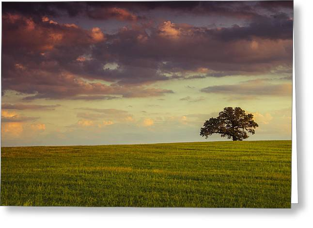 Purple Clouds Greeting Cards - Fields of DeLeon Greeting Card by Aaron S Bedell