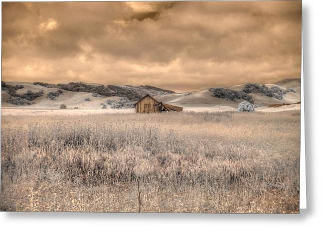 Recently Sold -  - Old Barns Greeting Cards - Fields of Gold Greeting Card by Jane Linders