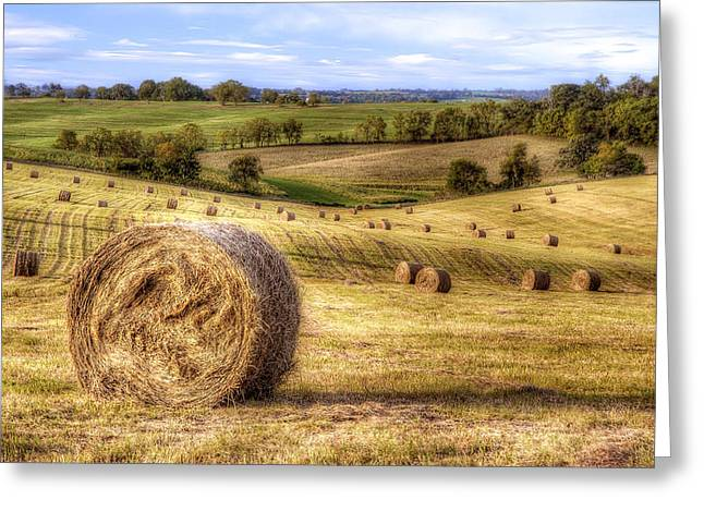 Bales Greeting Cards - Fields of Gold Greeting Card by Scott Norris