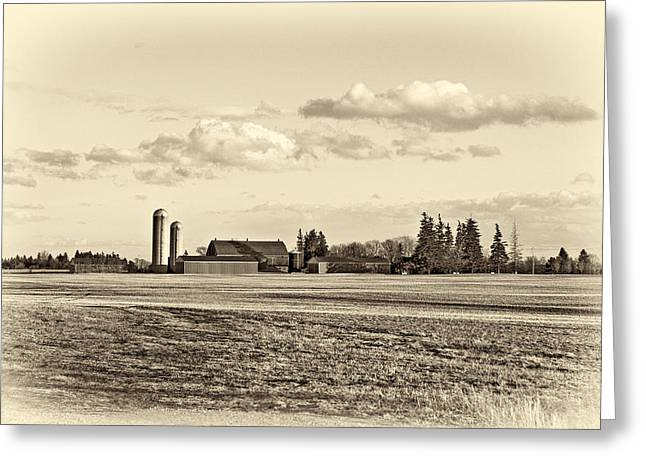 Sowing Greeting Cards - Fields of Gold sepia Greeting Card by Steve Harrington