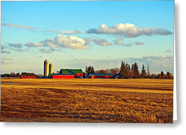 Sowing Greeting Cards - Fields of Gold Greeting Card by Steve Harrington