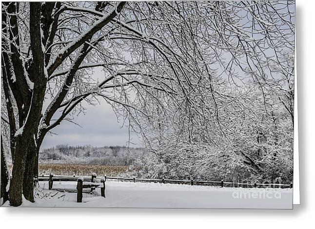 Winter Storm Nemo Greeting Cards - Fields of Nemo Snow Greeting Card by Deborah Smolinske