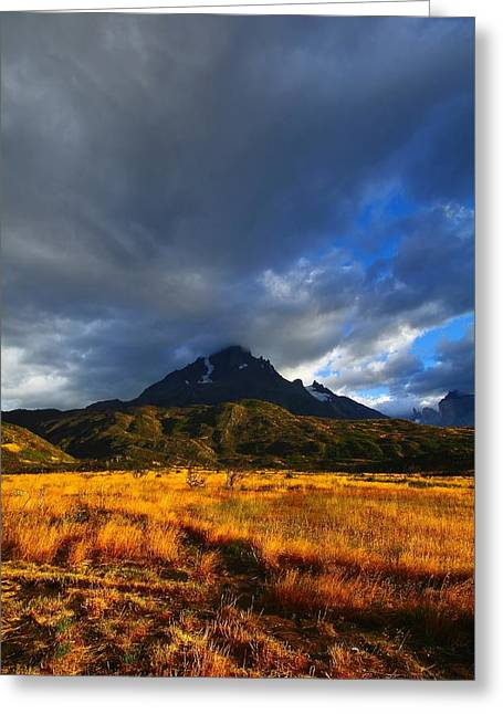 Chile Greeting Cards - Fields Of Patagonia 2 Greeting Card by FireFlux Studios