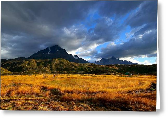 Chile Greeting Cards - Fields Of Patagonia Greeting Card by FireFlux Studios