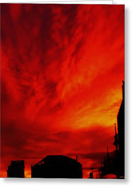 Sunset Greeting Cards Greeting Cards - Fierce Sky Greeting Card by Sharon Costa