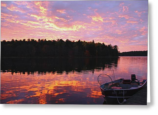 Fire In The Wood Greeting Cards - Fiery Dawn Greeting Card by Debbie Oppermann