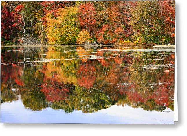 Pond Photographs Greeting Cards - Fiery Foliage Greeting Card by Mike Lang