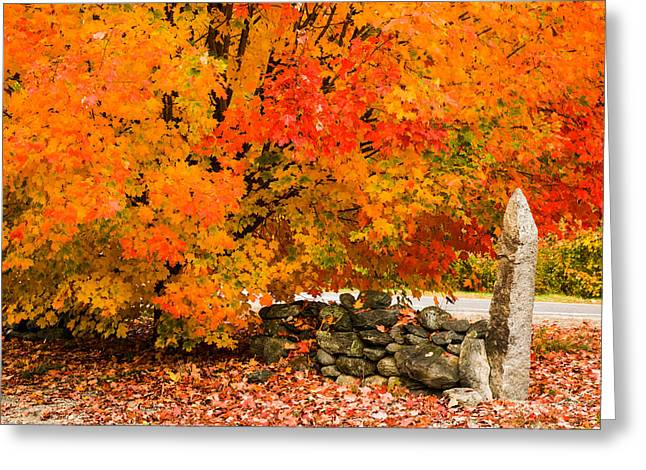 """autumn Foliage New England"" Greeting Cards - Fiery rock wall Greeting Card by Jeff Folger"