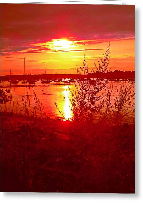 First-rate Greeting Cards - Fiery Sunset Greeting Card by Anne Sterling