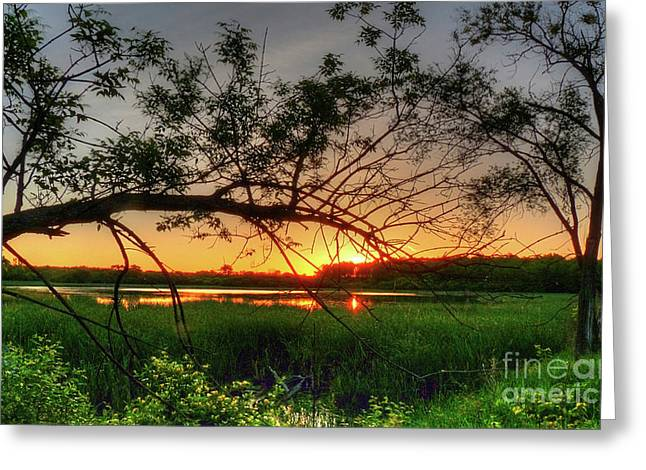 Nature Center Pond Greeting Cards - Fiery Swamp Sunset Greeting Card by Deborah Smolinske