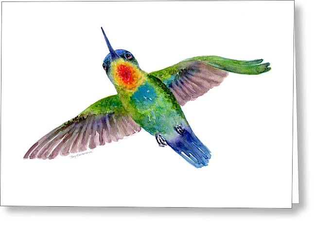 Fiery-throated Hummingbird Greeting Card by Amy Kirkpatrick