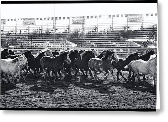 Cave Creek Cowboy Greeting Cards - Fiesta Days Rodeo Greeting Card by Tommy Anderson