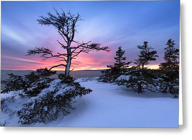 Maine Landscape Greeting Cards - Fifty Greeting Card by Patrick Downey