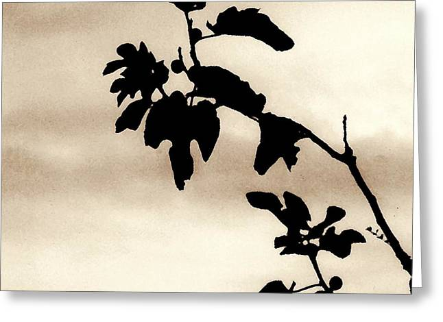 Fig Trees Greeting Cards - Fig Tree in Sepia Greeting Card by Sarah Loft