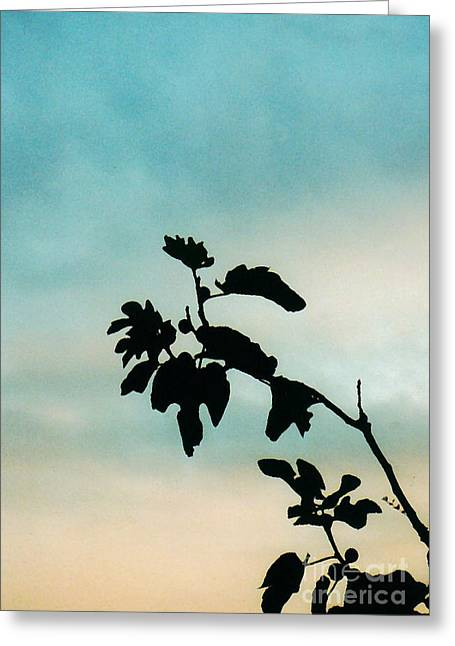 Fig Trees Greeting Cards - Fig Tree Greeting Card by Sarah Loft