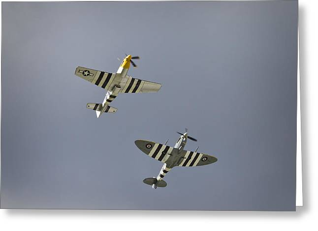 Ferocious Frankie Greeting Cards - Fighters Reaching the Sky Greeting Card by Maj Seda