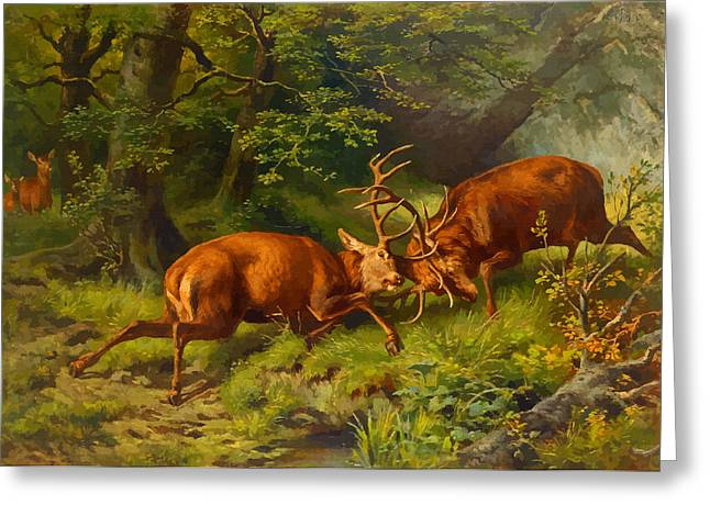 Label Greeting Cards - Fighting Pausinger of deer - 1887 Greeting Card by Don Kuing
