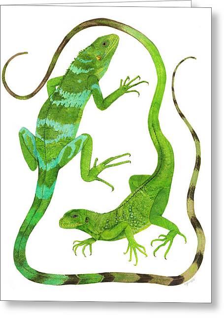 Iguanas Greeting Cards - Fijian Iguanas Greeting Card by Cindy Hitchcock