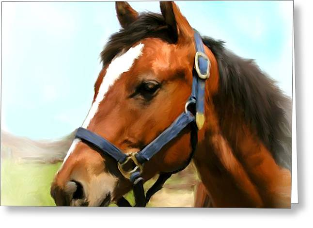 Yearling Greeting Cards - Filly Greeting Card by Paul Tagliamonte
