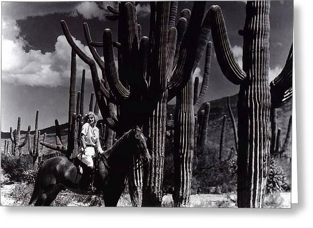 Duo Tone Greeting Cards - Film homage Jean Harlow Bombshell 1933 Saguaro National Monument Tucson  Arizona  duo-tone 2008 Greeting Card by David Lee Guss