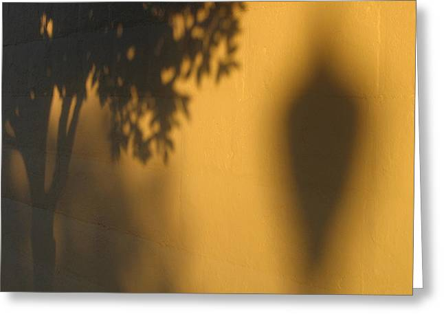 1757-1827 Greeting Cards - Film noir Alfred Hitchcock Shadow of a Doubt 1943 1 shadow wall Casa Grande Arizona 2004 Greeting Card by David Lee Guss