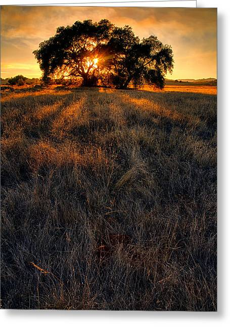 Big Sky Greeting Cards - Filtered Greeting Card by Peter Tellone