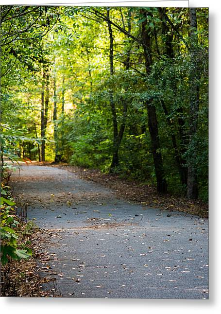 Loveliness Greeting Cards - Filtering Light on a Forest Trail Greeting Card by Parker Cunningham
