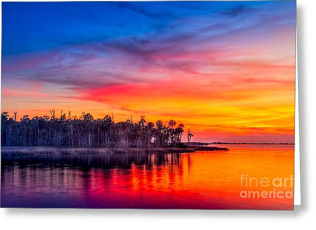 Wildlife Refuge. Greeting Cards - Final Glow Greeting Card by Marvin Spates
