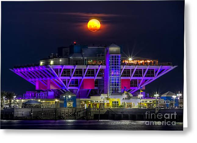St. Petersburg Greeting Cards - Final Moon over the Pier Greeting Card by Marvin Spates