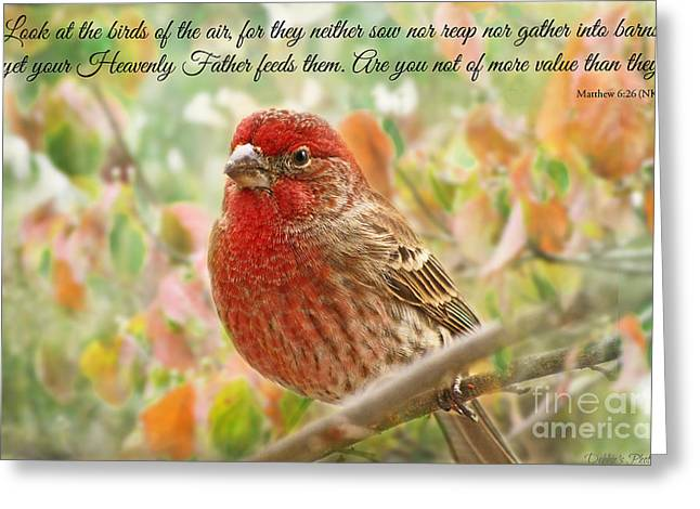 Debbie Portwood Greeting Cards - Finch with verse NEW VERSION Greeting Card by Debbie Portwood