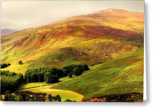 Beautiful Scenery Greeting Cards - Find the Soul. Golden Hills of Wicklow. Ireland Greeting Card by Jenny Rainbow