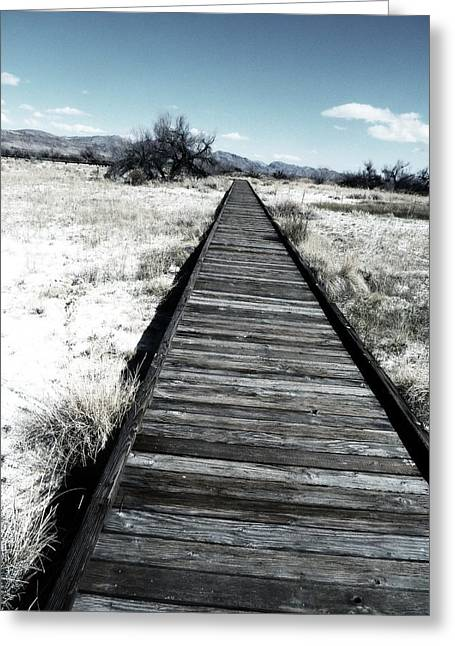 Ash Flat Greeting Cards - Find Your Path Even in Death Valley Greeting Card by Carolina Liechtenstein