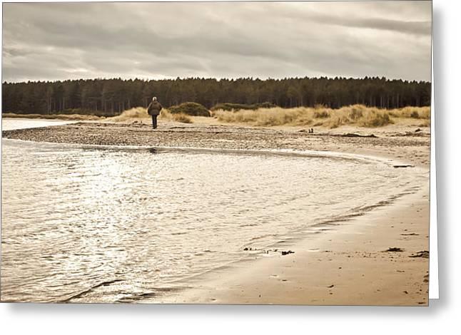 Walk Alone Greeting Cards - Findhorn Beach Greeting Card by Tom Gowanlock