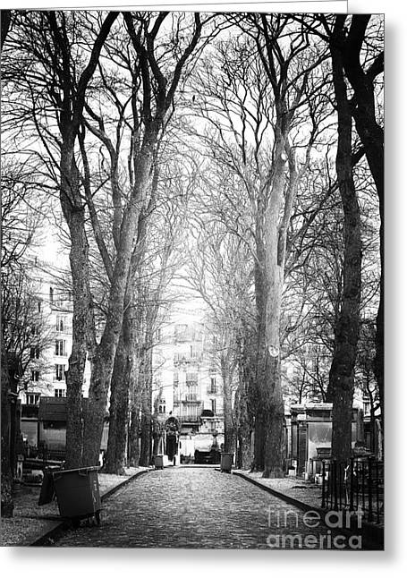 Cemeteries Of Paris Greeting Cards - Finding Light Greeting Card by John Rizzuto