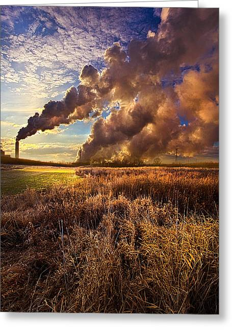 Power Plants Greeting Cards - Finding the Beauty Within Greeting Card by Phil Koch